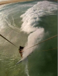 surfs 8